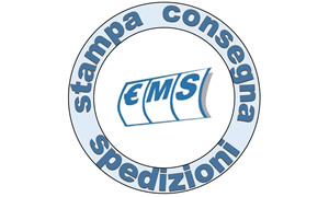 ems-easy-management-solutions-srl
